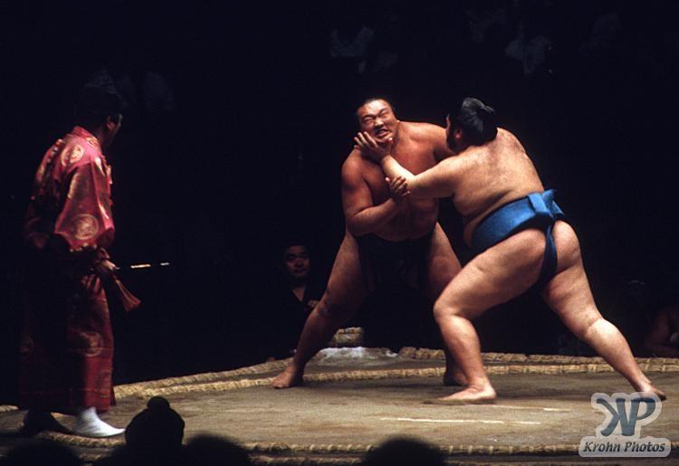 cd85-s11.jpg - Sumo Wrestling