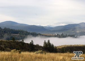 cd174-d02.jpg - Fog in the Valley