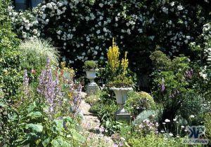 cd1000-s12.jpg - Garden Scene
