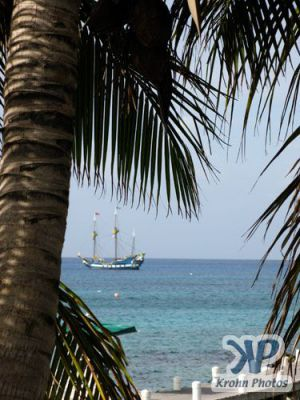 cd124-d07.jpg - Grand Cayman