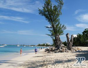 cd124-d11.jpg - Grand Cayman