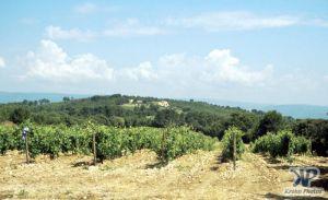 cd25-s22.jpg - Provence