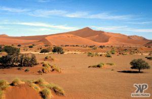 cd11-s03.jpg - Sand Dunes
