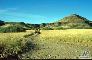 cd11-s22.jpg - Grasslands