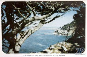 cd2032-pc01.jpg - Point Lobos