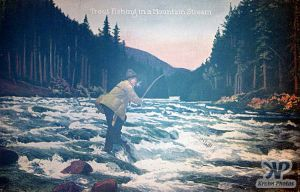 cd2030-pc13.jpg - Trout Fishing