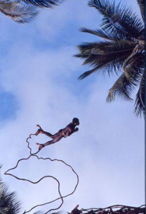 dvd1001-s51.jpg - Land Diver