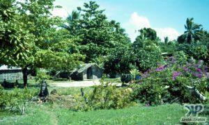 cd46-s17.jpg - Village