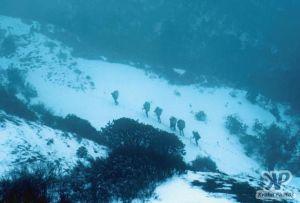 cd51-s24.jpg - Trekking in the snow
