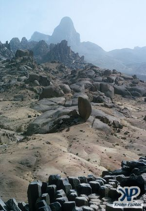 dvd1000-s100.jpg - Western Sahara
